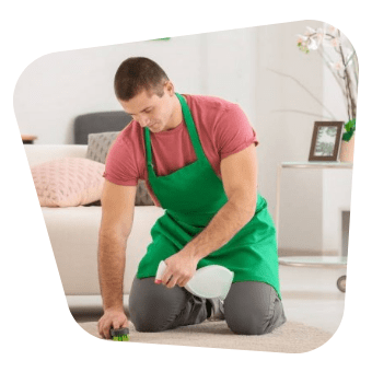 best bond cleaners in camp hill