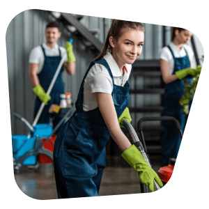 professional bond cleaning brisbane