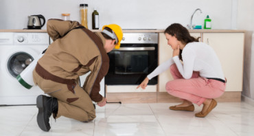 pest control srevices in brisbane